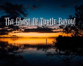 turtle bayou