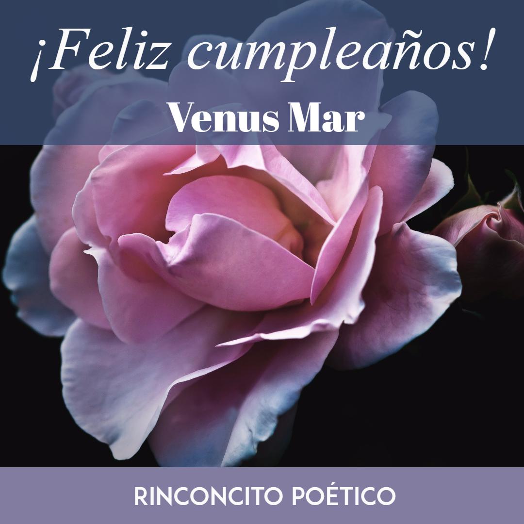 Rose,                Family,                Flower,                Text,                Petal,                Purple,                Love,                Order,                Font,                Photo,                Caption,                White,                Black,                 Free Image