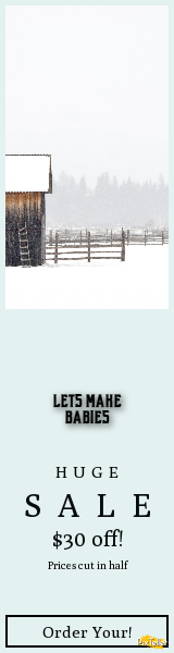 Cabin,                Farm,                Agriculture,                Landscape,                Winter,                Wood,                Fence,                White,                Barn,                Ladder,                Snow,                Cold,                House,                 Free Image