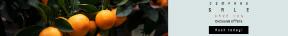 Leaderboard web banner template for sales - #banner #businnes #sales #CallToAction #salesbanner #price #plant #tangerine #fruit #eat #orange