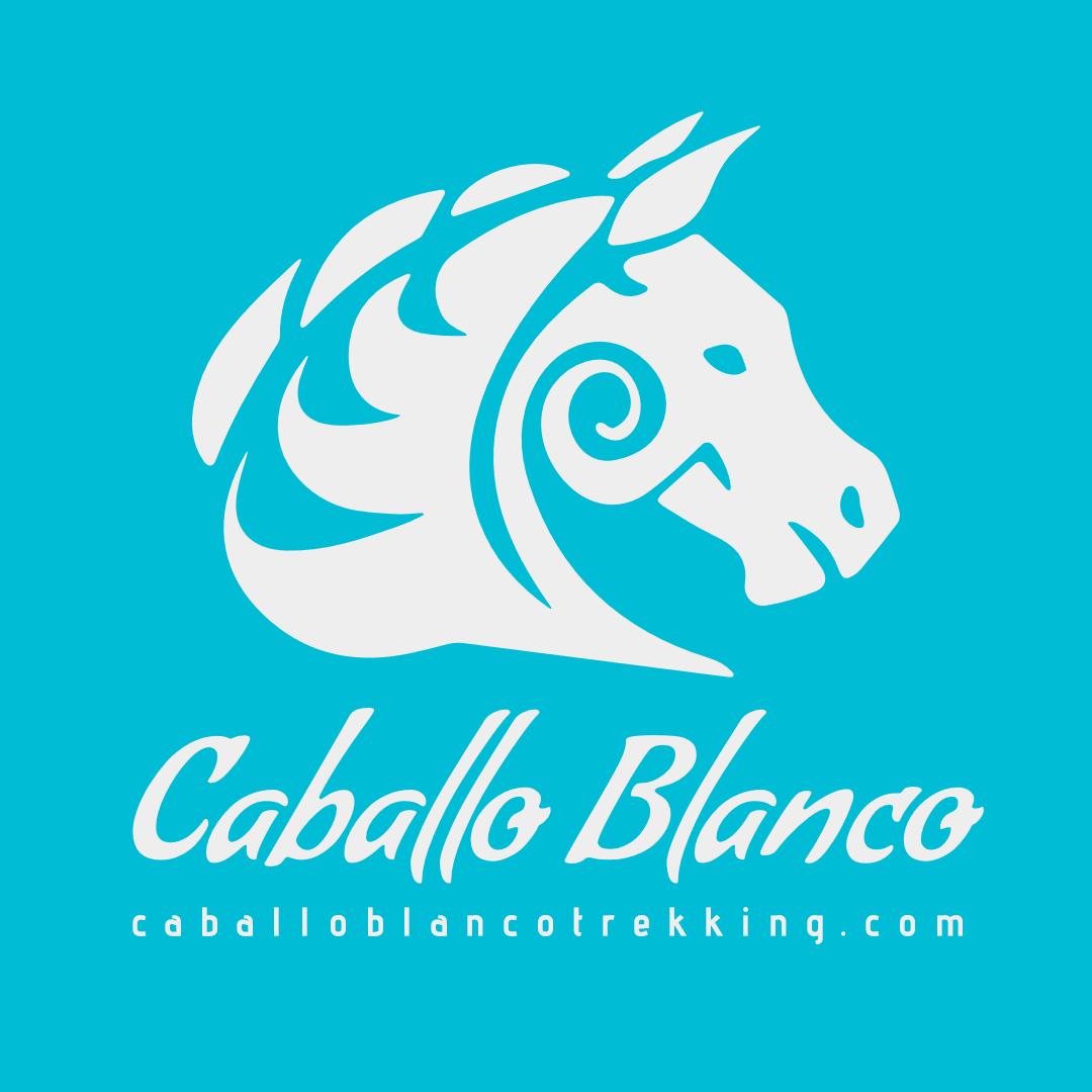 Caballo Blanco Logo Design Design  Template