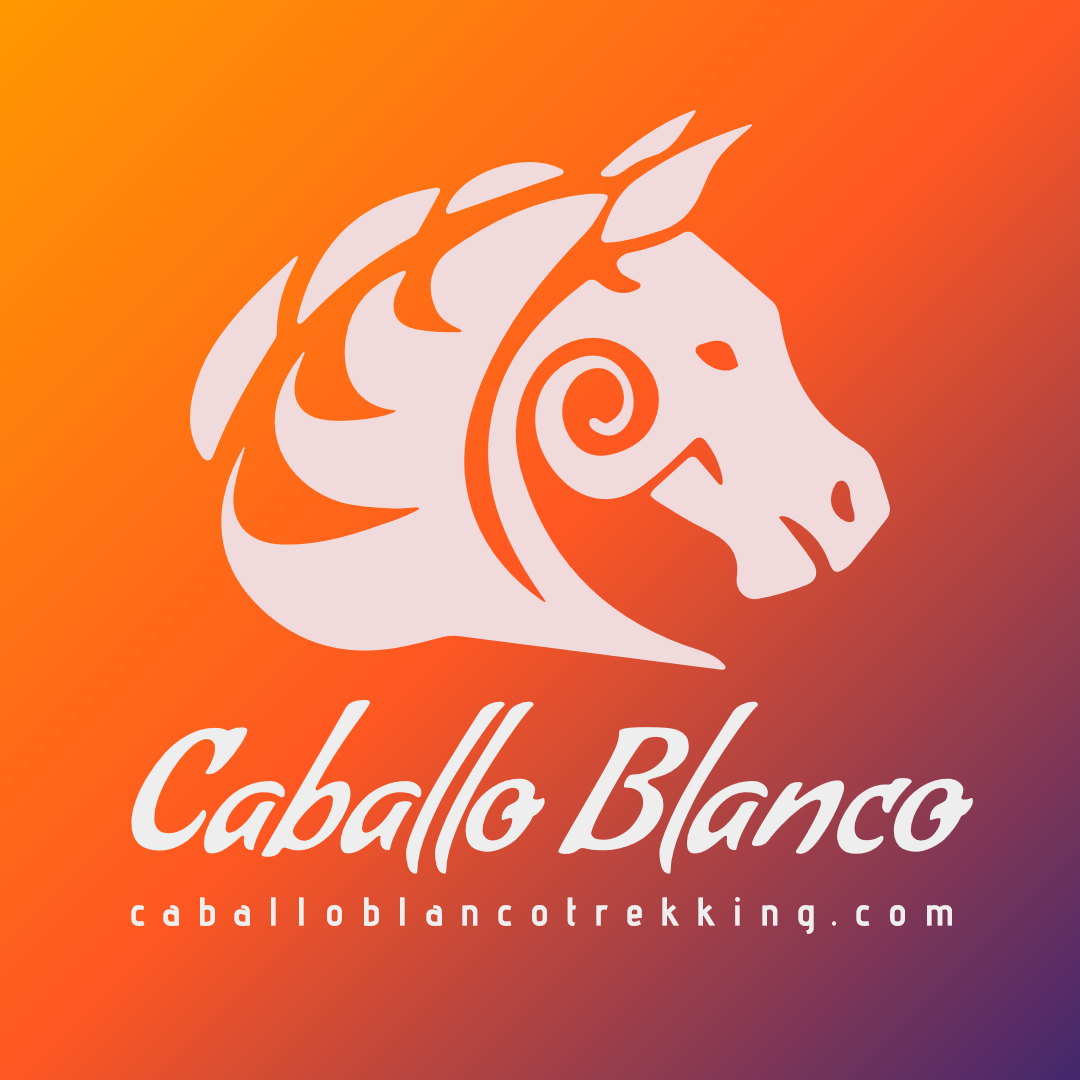 Caballo Blanco Logo Design Design  Template