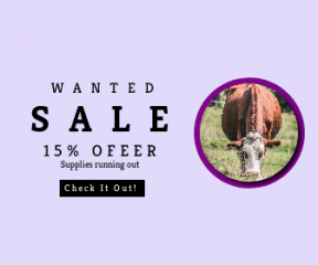 Square large web banner template for sales - #banner #businnes #sales #CallToAction #salesbanner #bovine #browsing #brown #cattle #tag #outdoors