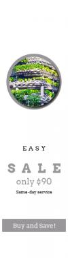 Skyscraper wide web banner template for sales - #banner #businnes #sales #CallToAction #salesbanner #shrubbery #street #ecology #building #top #column #light #plant #tree