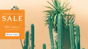 FullHD image template for sales - #banner #businnes #sales #CallToAction #salesbanner #cactus #nature #plant #ecology #green #cactu #desert #sunset #dry #leafe