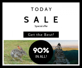 Square large web banner template for sales - #banner #businnes #sales #CallToAction #salesbanner #bunny #bicycle #rabbit #hill #jackrabbit #top #blur #sports #box