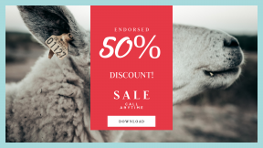 FullHD image template for sales - #banner #businnes #sales #CallToAction #salesbanner #tag #animal #wildlife #close #agriculture #face #nature