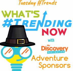 Pilgrim Tuesday Trends