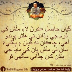 Sindhi SP Quotes