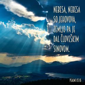 Psalmi 115-16