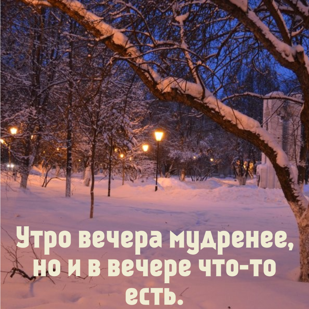 Winter,                Snow,                Nature,                Tree,                Sky,                Freezing,                Morning,                Branch,                Evening,                Font,                Poster,                Text,                Quote,                 Free Image