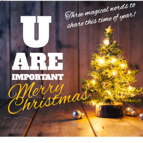 U Are Important Merry Christmas 2018