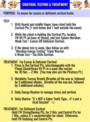 Cortisol Testing & Treatment
