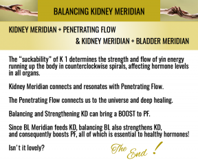 Kidney and Penetrating Flow Relationship