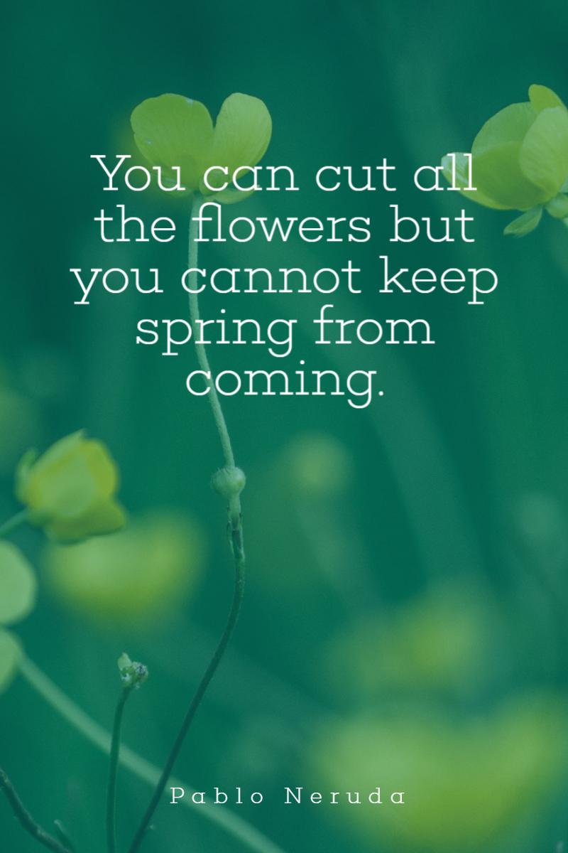 Spring Simple Quote Design - #quote Design  Template