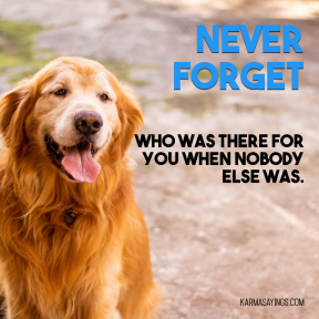 Never forget who was there for you when nobody else was #quote #saying
