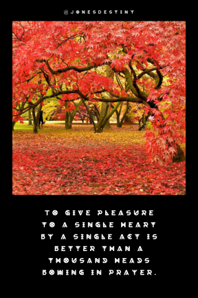 Quote image - #Quote #Wording #Saying #backgrounds #3d #background #red #autumn #bgs #colourful #bg