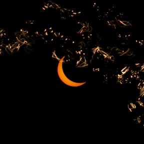 Photo Overlay Design - #PhotoOverlay #PhotoFilter #Photography #sky #crescent #moon #celestial #OverlayPhoto