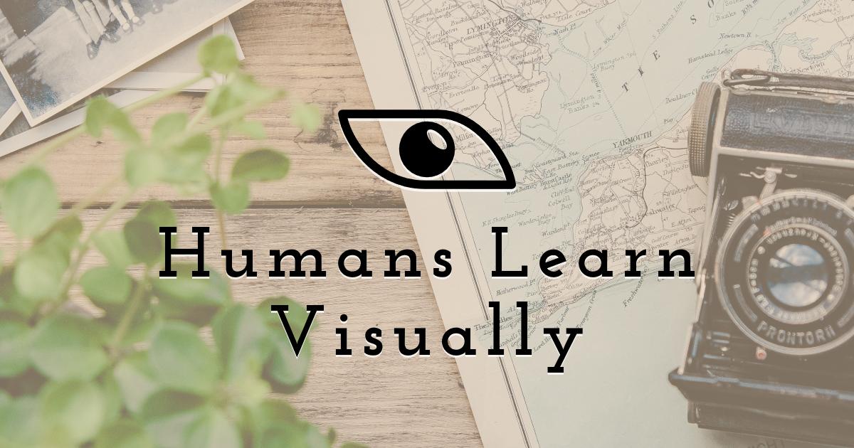 Humans learn visually