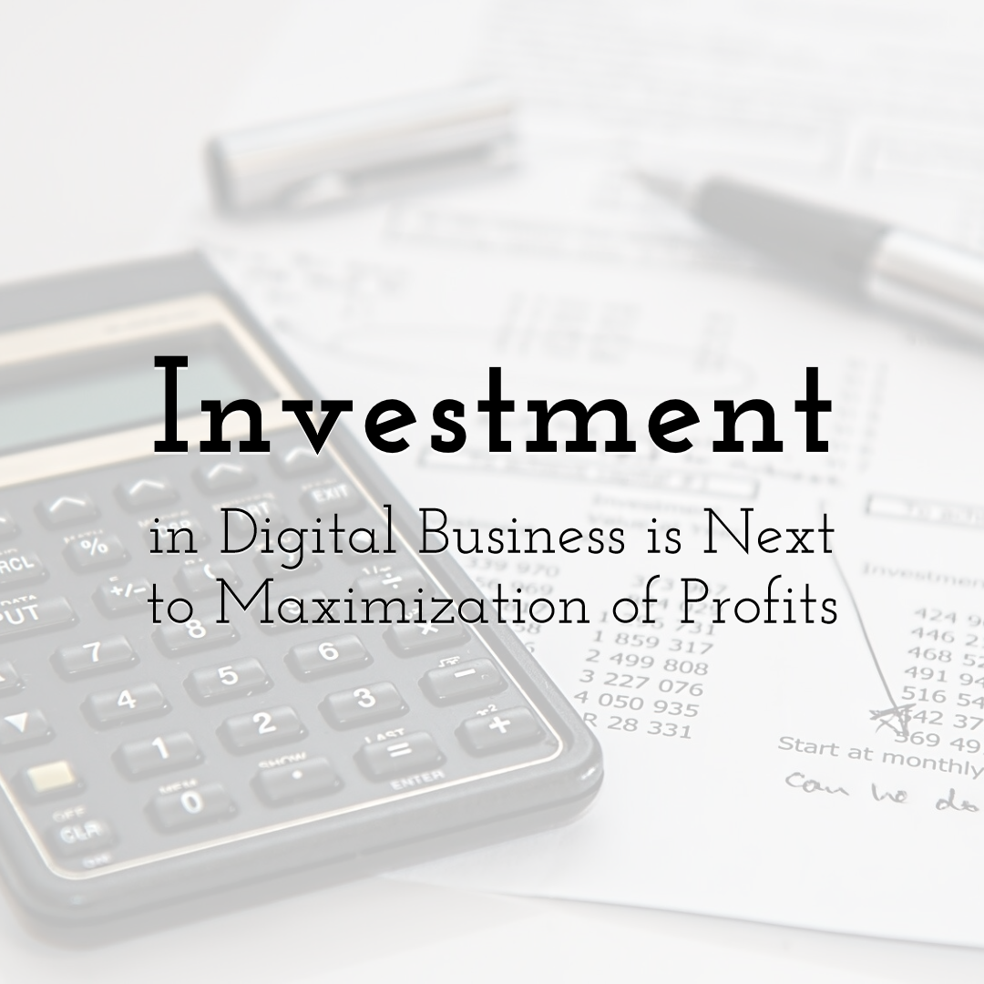 Investment in Digital Business is Next to Maximization of Profits