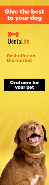 Dog Food Design  Template