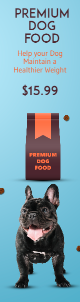 Dog Food Premium Pet Food Animation  Template