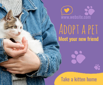 Adopt Cat Pet Design  Template