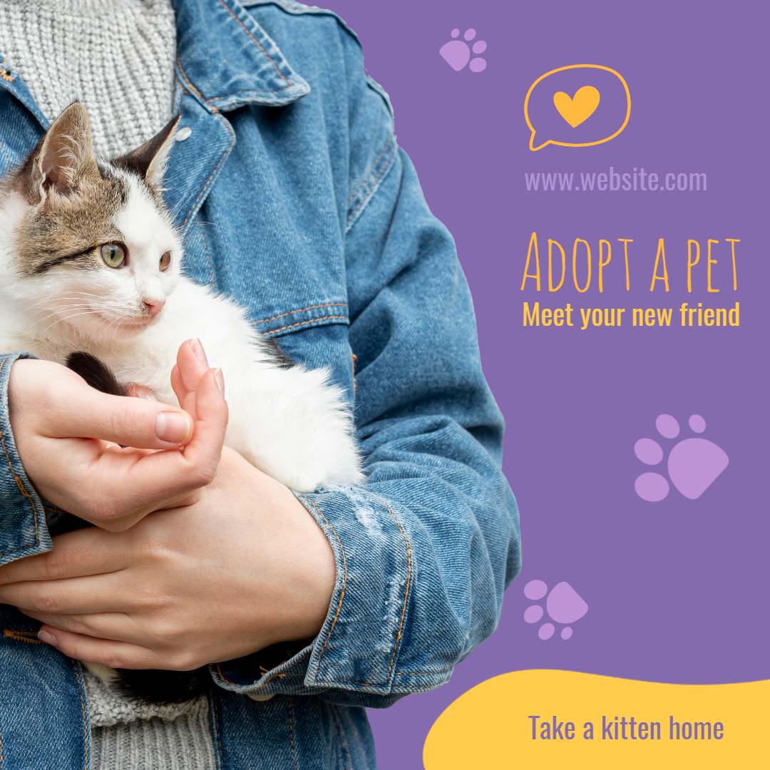 Adopt Cat Pet Design  Template
