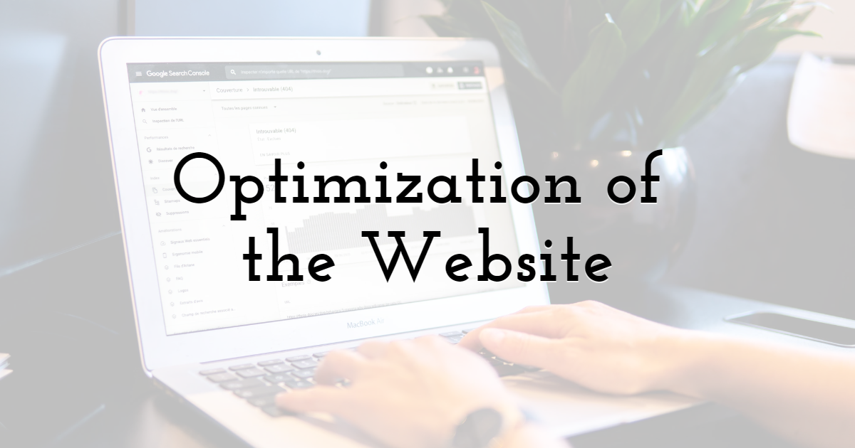 Optimization of the Website