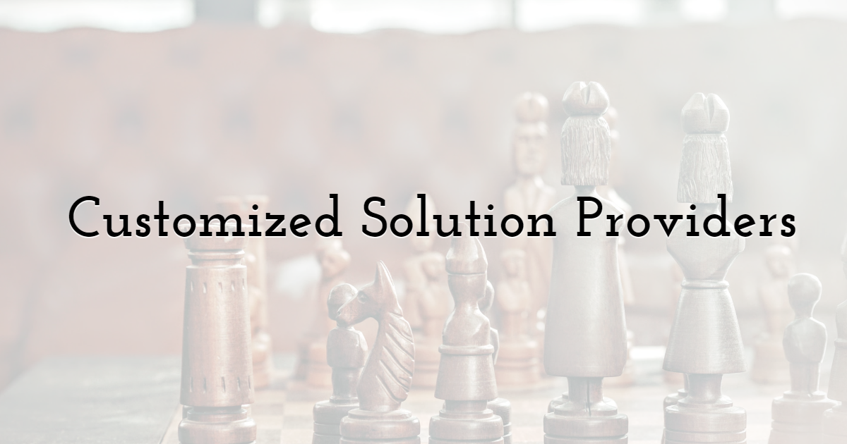 4. Customized Solution Providers