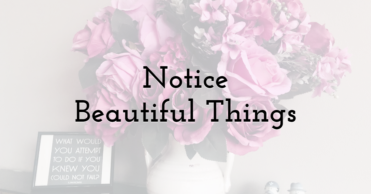 4. Take Your Time to Notice Beautiful Things