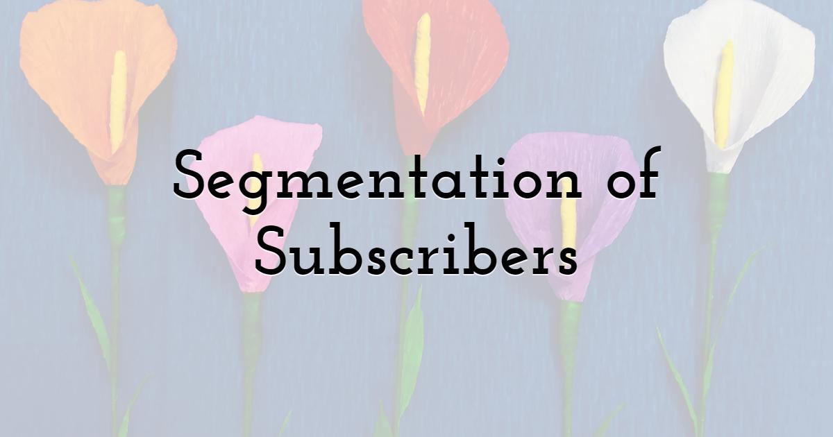 Segmentation of Subscribers