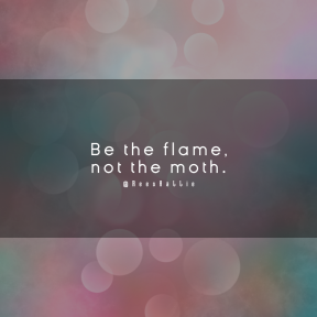 Square design layout - #Saying #Quote #Wording #atmosphere #computer #sunlight #sky #petal #heart #texture